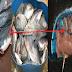 "Mengerikan, Miriss Bacanya..!!! Ternyata 5 Jenis Ikan Ini Bila Di Makan Malah Membuat Anda Tidak Sehat..""Nomor 4 Berbahaya Layaknya Lemak Babi..!!!! Berikut Penjelasan'Nya :"