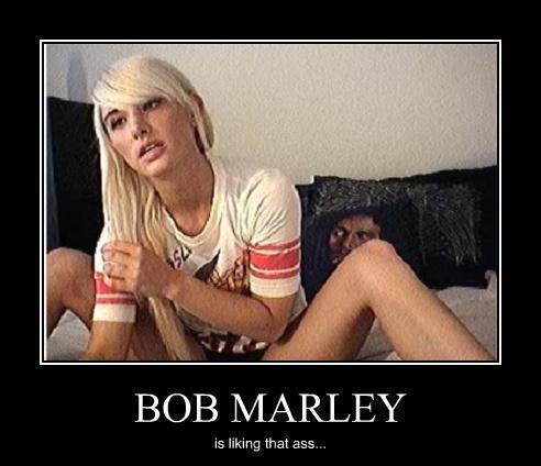 Bob Ass 103
