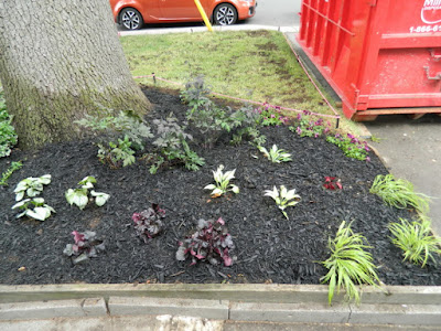 Baby Point Toronto front garden renovation after by Paul Jung Gardening Services