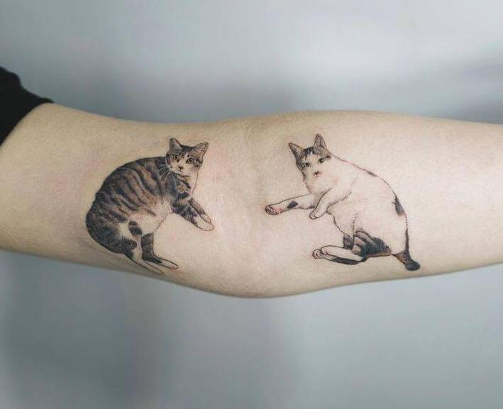 tabby Cat Tattoos