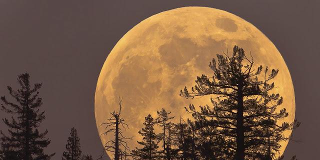 """ظاهرة """"القمر العملاق"""""""