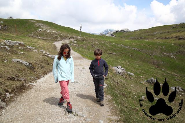 louveteaux-velika-planina-slovenie