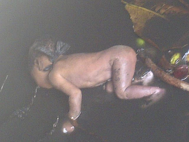 Graphic: Baby dumped inside gutter in Illorin
