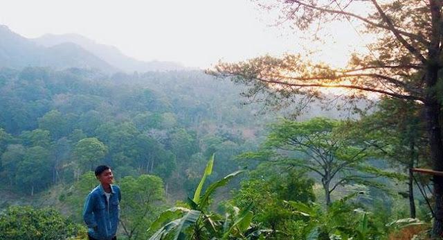 Wisata Panjat Tebing Waka Tangga di Petang Badung Bali Terbaru