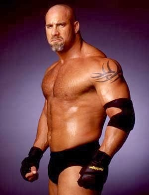 Bill Goldberg hall of fame speech