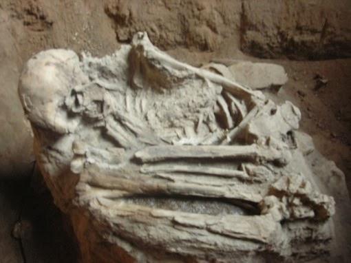 tulang manusia prasejarah