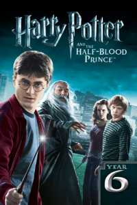 Harry Potter and the Half-Blood Prince (2009) Dual Audio Hindi 720p Download 1GB BRRip