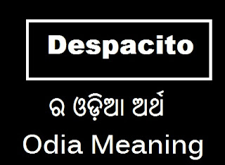 odia meaning of despacito