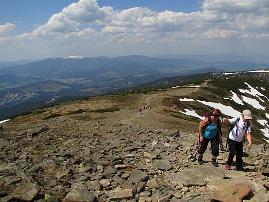 Ścieżka nasza wchodzi na kamienną stertę, tworzącą kopułę szczytową Babiej Góry