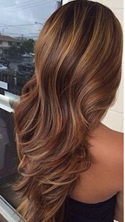 warna rambut dark brown caramel highlight