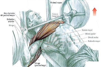 Si es posible amamantar después de la operación del aumento del pecho