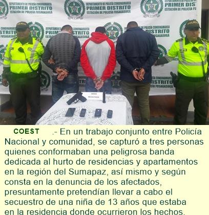 """Desmantelada banda """"LOS DEL SUR"""" dedicada al hurto de residencias en la región del Sumapaz."""