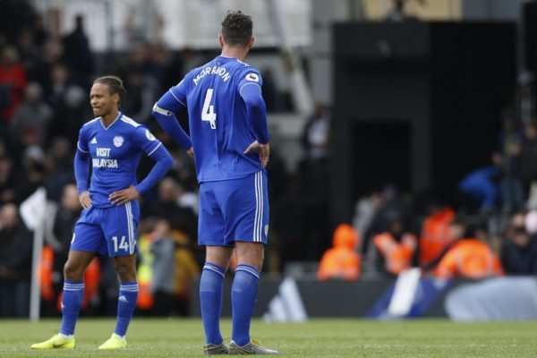 See how Cardiff city got relegated from Premier League