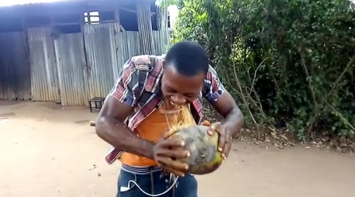 Video: Naija guy goes viral after peeling whole coconut with bare teeth