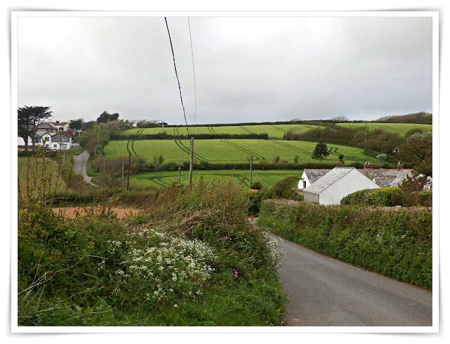 Lanes and fields in Cornwall