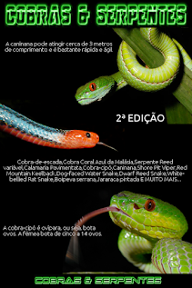 E BOOK  Cobras Serpentes Vol 2