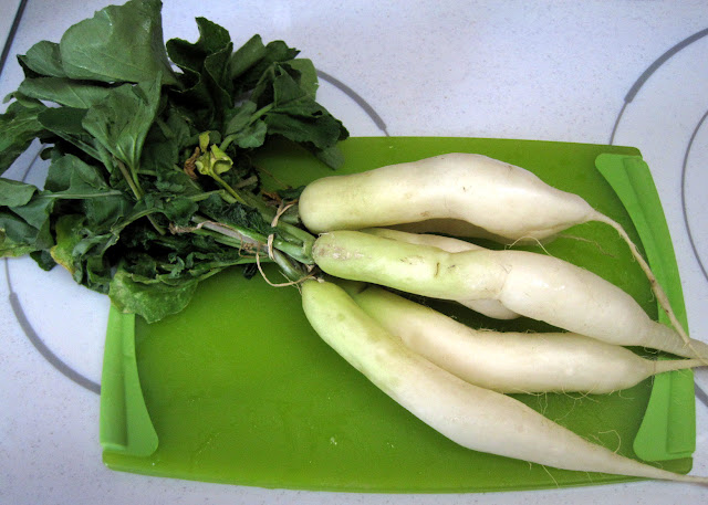 long white radishes