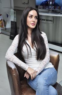Actress Farah Karimaee Pictures in Jeans at Teraa Surroor Movie Press Meet  0013.jpg