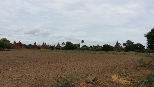 Campos de Cultivo en Bagán