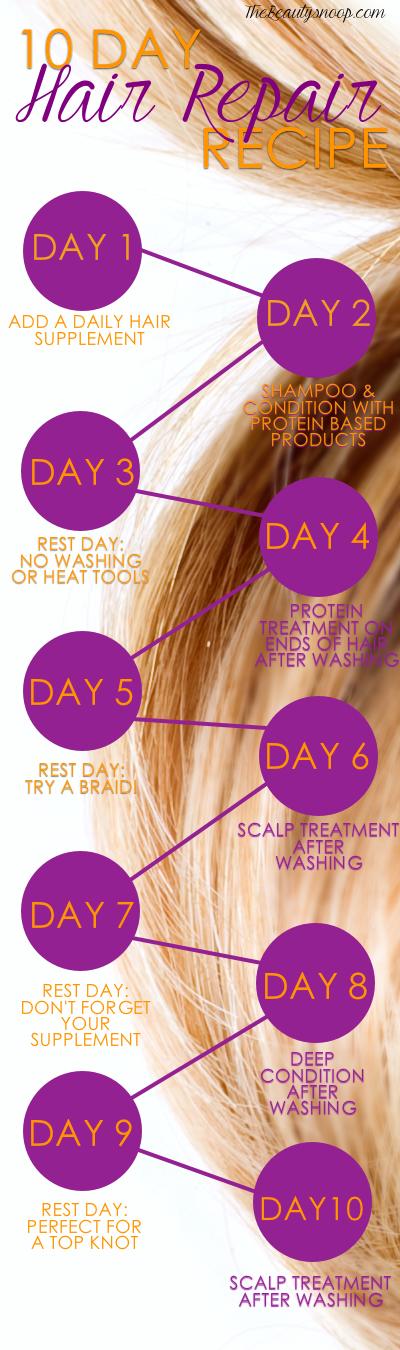 10 DAY HAIR REPAIR RECIPE