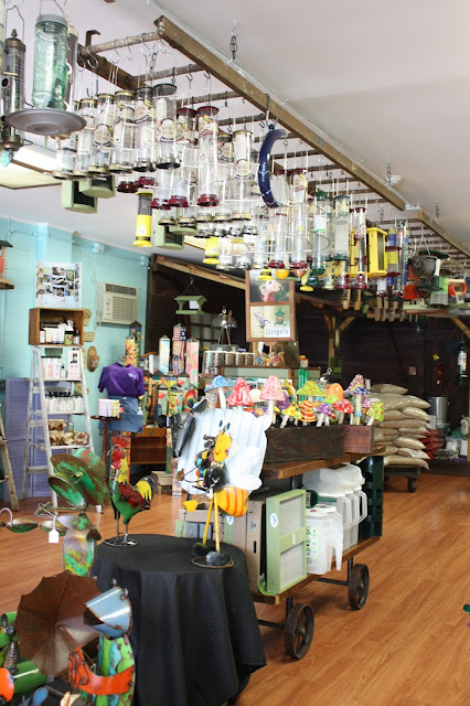 The Wildbird Shack in Mount Prospect, Illinois is the Chicago suburbs source for birding items.