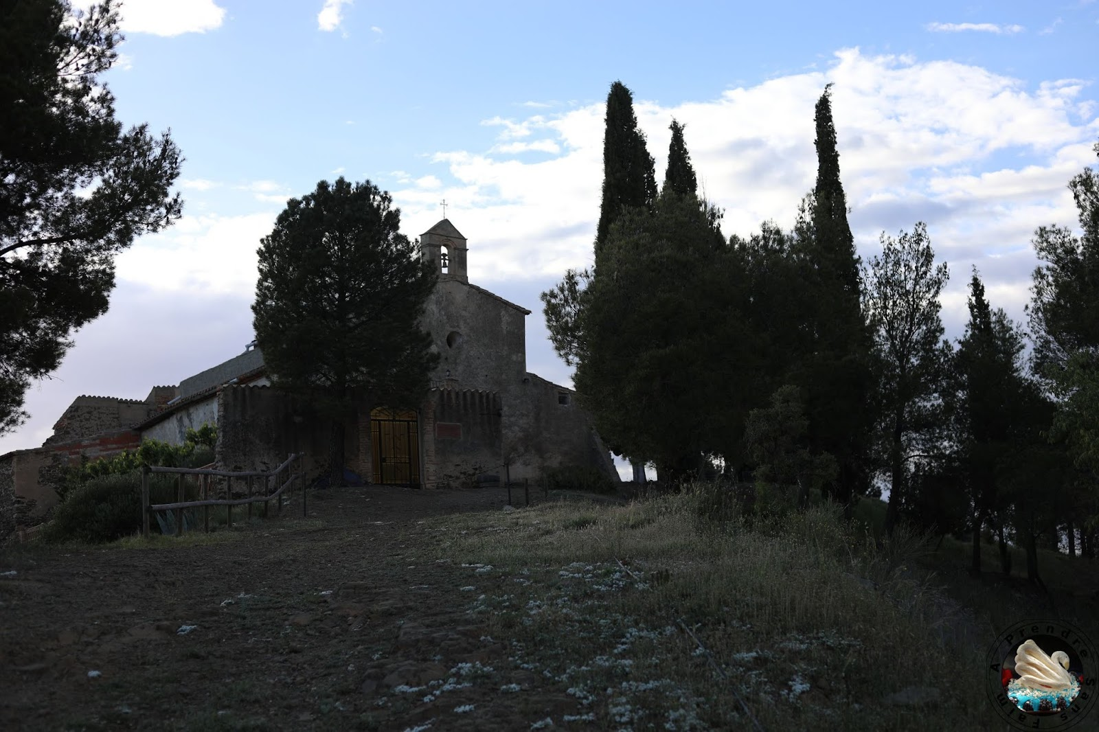 Le vignoble d'Alvaro Palacios : admirer les paysages à l'origine de son vin L'Ermita