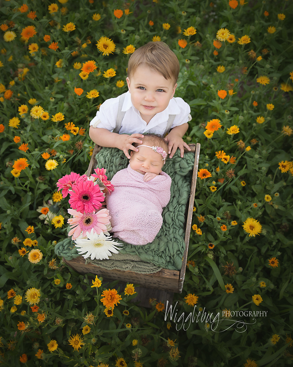 Award winning outdoor newborn photo from DeKalb, Sycamore, IL Newborn Photographer