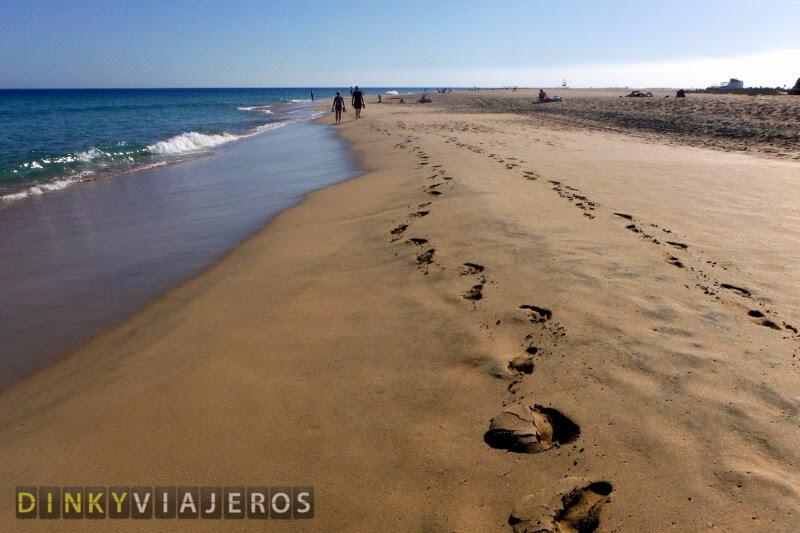 Fuerteventura. Playa del Matorral