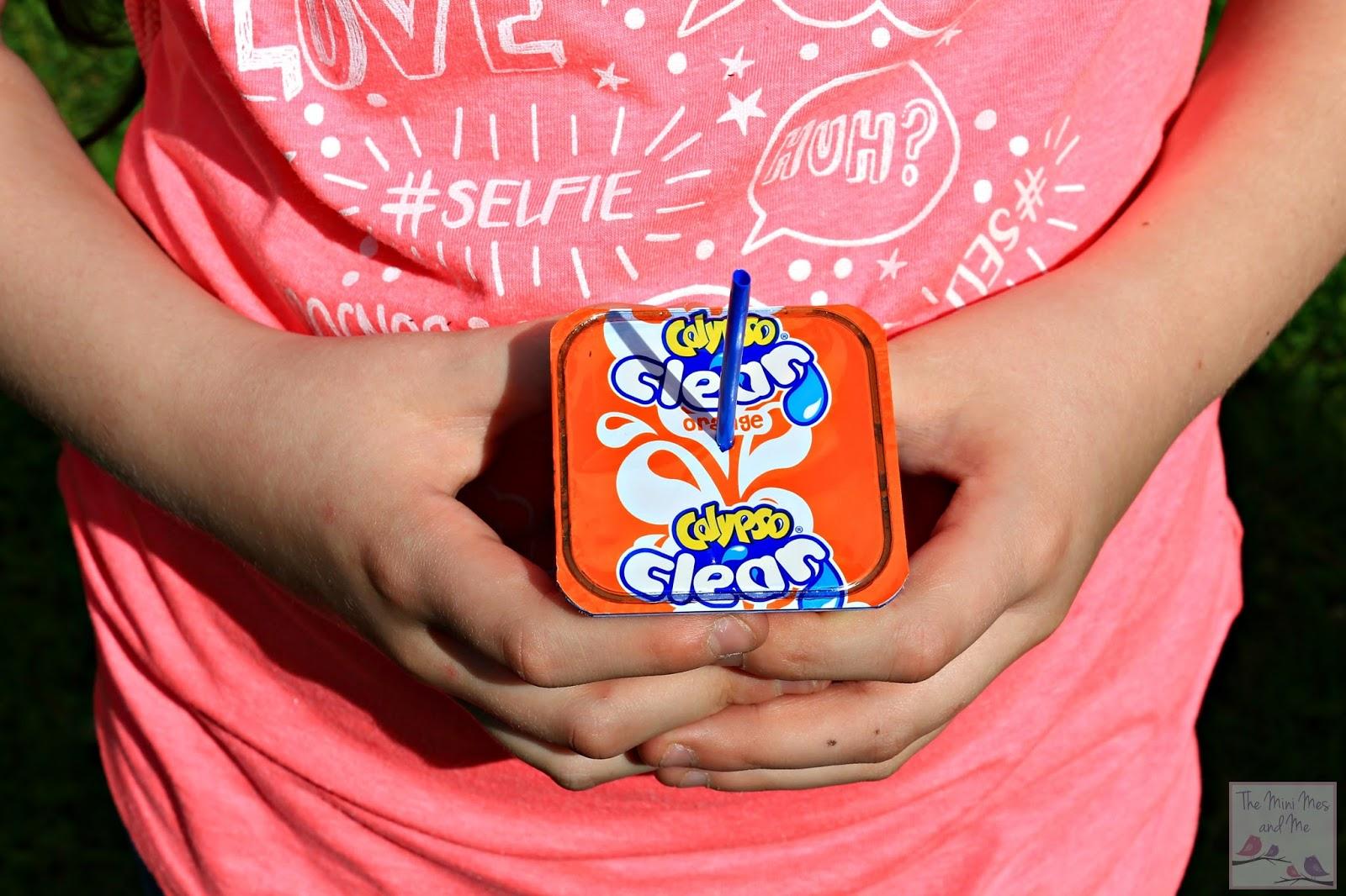 The Mini Mes and Me blog - Calypso Campaign