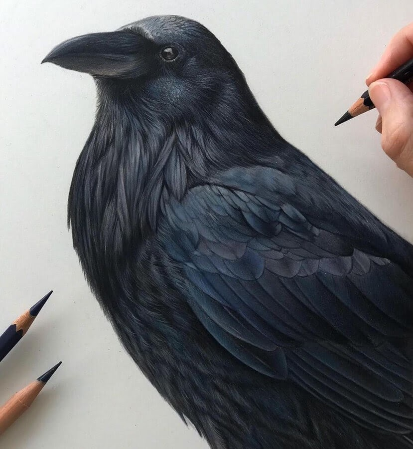 04-Raven-Claire-Milligan-www-designstack-co