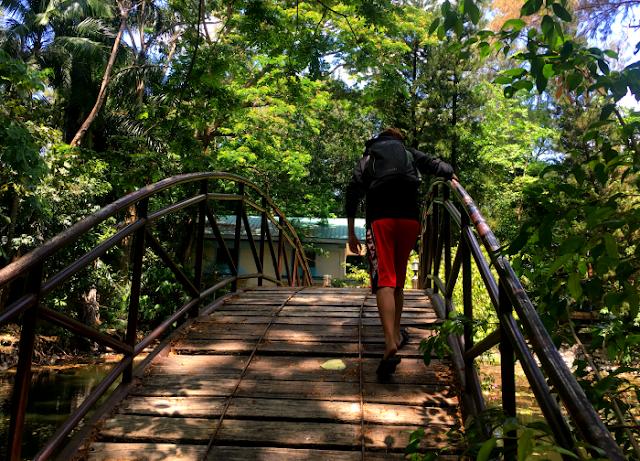 Mystical Wooden Bridge in Argao