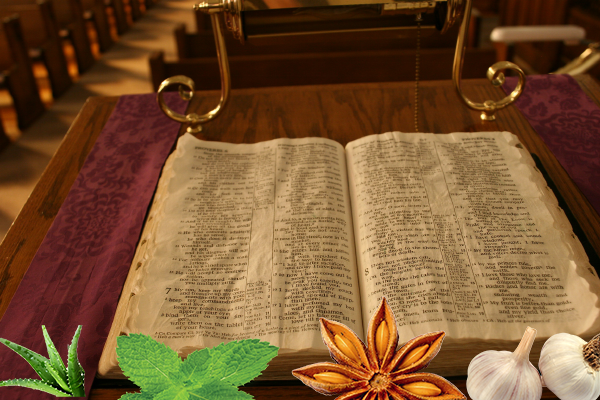 natural remedies from the bible