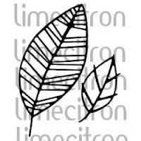http://boutique.limecitron.com/boutique/fr/matrices-de-coupe-dies/matrice-de-coupe-die-2-feuilles-p962c82/