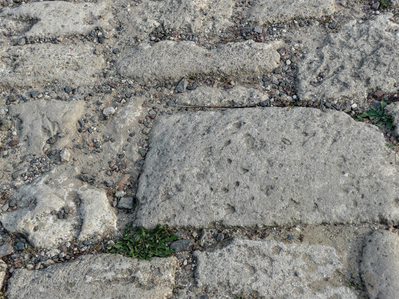 Подгорецкий замок. Средневековые каменные плиты