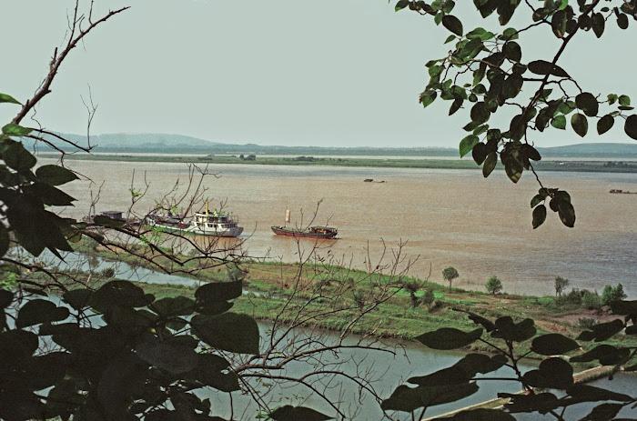 Nankin, Yangtze, Wufu, rizières, © L. Gigout, 1990