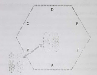 Procedure for Conducting Hexagonal Obstacle Test