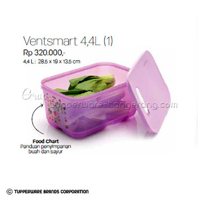 Ventsmart 4,4L Promo Tupperware April 2016