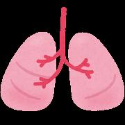 肺のイラスト(人体)