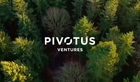 Pivotus Ventures