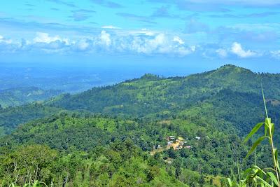 Darjeeling Para
