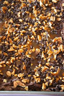 Poke Turtle Brownies: Savory Sweet and Satisfying