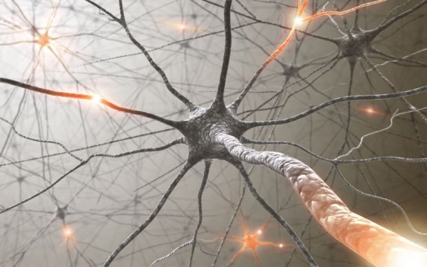 Caminar vuelve al cerebro más creativo y le cura las penas