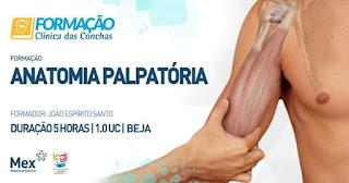https://formacao.clinicadasconchas.pt/pt/formacao/2271/anatomia-palpatoria/