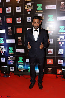 Bollywood Celebrities on the Red Carpet Of Zee Cine Awards 2017 Exclusive 032.JPG