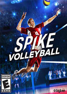 Spike Volleyball PC download