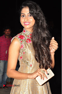 Actress Nithya Naresh Pictures at Nandini Nursing Home Audio Launch  0153.JPG