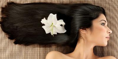 8 Makanan untuk Bantu Rambut Cepat Tumbuh Panjang