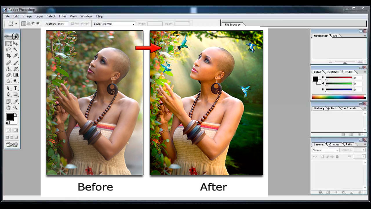 Adobe Photoshop 7 0 All Filters And Plugins Free Download