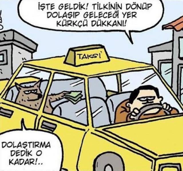 tilki ve taksici karikatürü