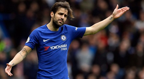 Cầu thủ Fabregas trong màu áo của CLB Chelsea